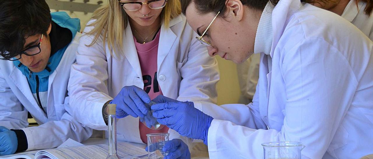 Alumnas del ciclo  de laboratorio  clínico del Centro  de Estudios  Superiores Aloya.  