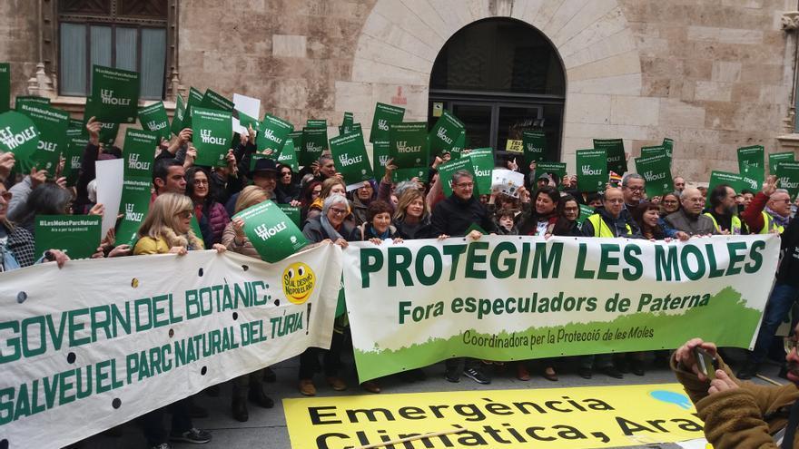 "Merche Cruz: ""La retirada de Puerto Mediterráneo allana el camino a la protección del Paraje Natural de les Moles"""