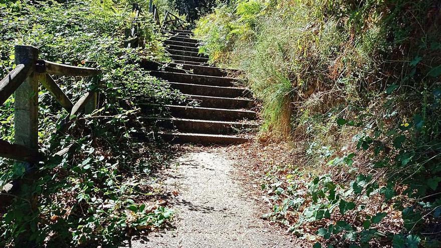 """Vecinos de Sabaceda se quejan de la """"selva"""" que invade el parque de Pedroso"""