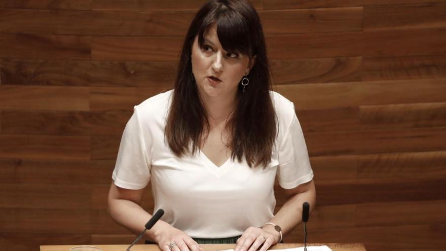 Ciudadanos prescinde de Laura Pérez Macho como portavoz en la Junta