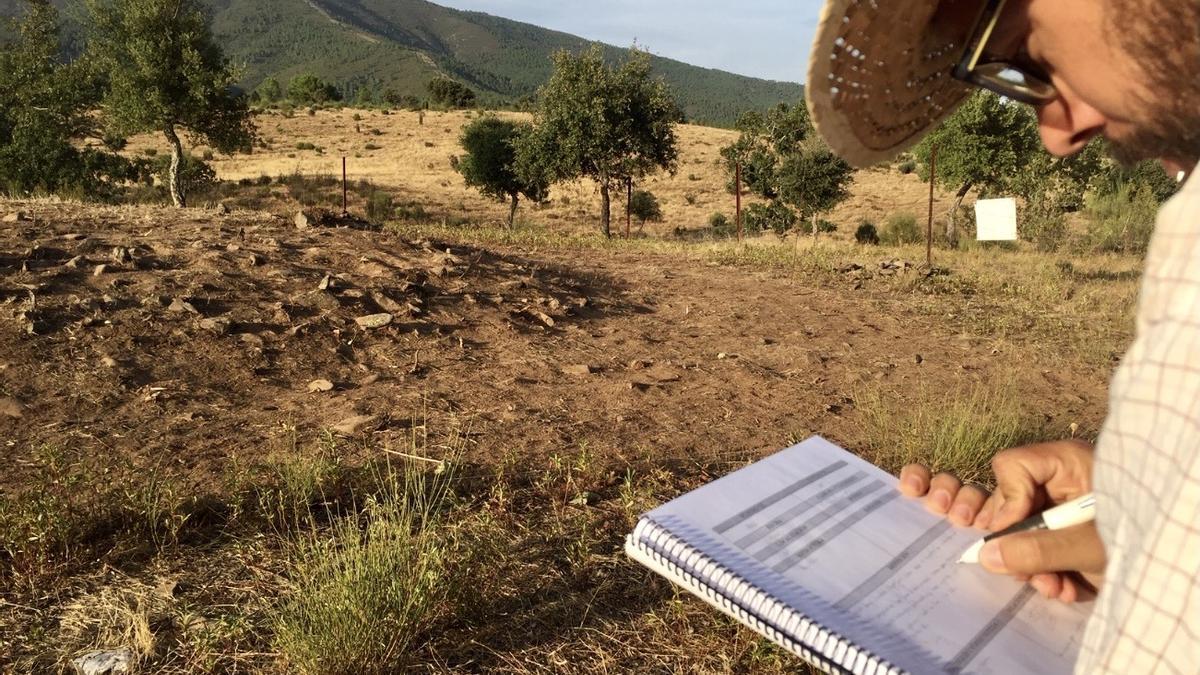 Uno de los arqueólogos realiza las primeras planimetrías.