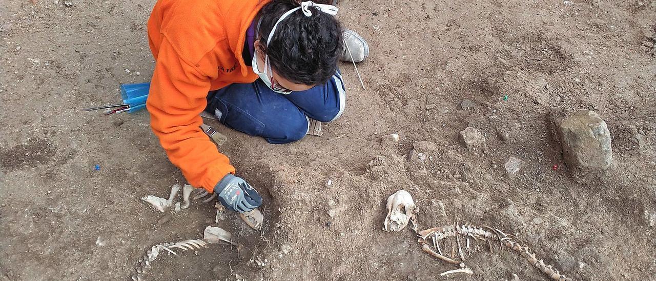 Las sepulturas de los dos canes en el  patio sur del palacio.En la fotografía  inferior, la zona del alcázar. L-EMV
