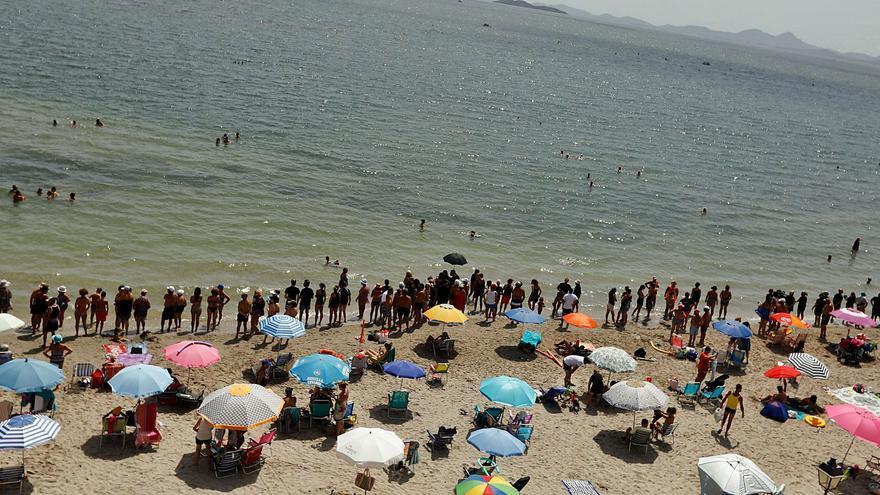 Tonnenweise tote Fische im Mar Menor