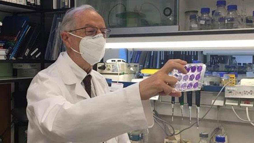 Ciencia y empresas españolas se unen contra el covid: patentes a bajo coste para evitar la dependencia