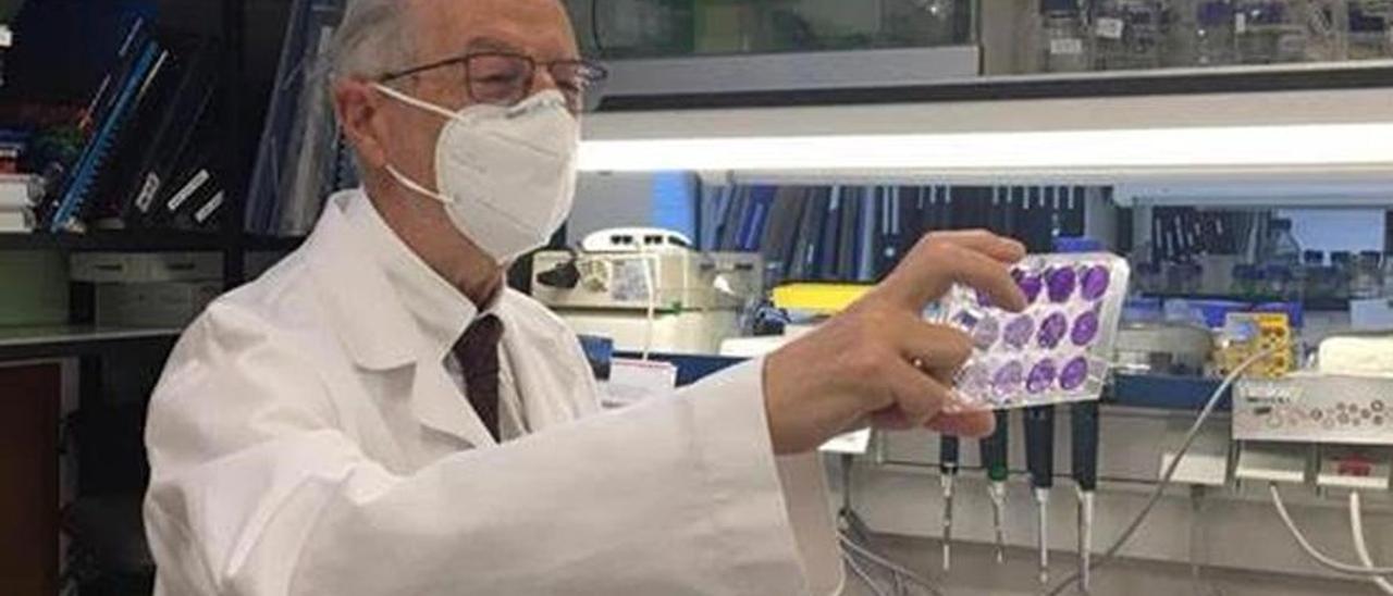 El virólogo Luis Enjuanes, en el Centro Nacional de Biotecnología del CSIC