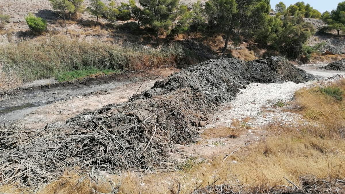 Los lodos en el margen de la rambla