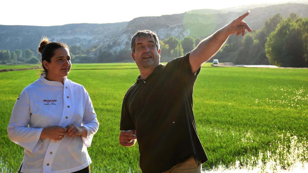 Una 'Espiga Dorada' para los chefs que utilicen Arroz de Calasparra