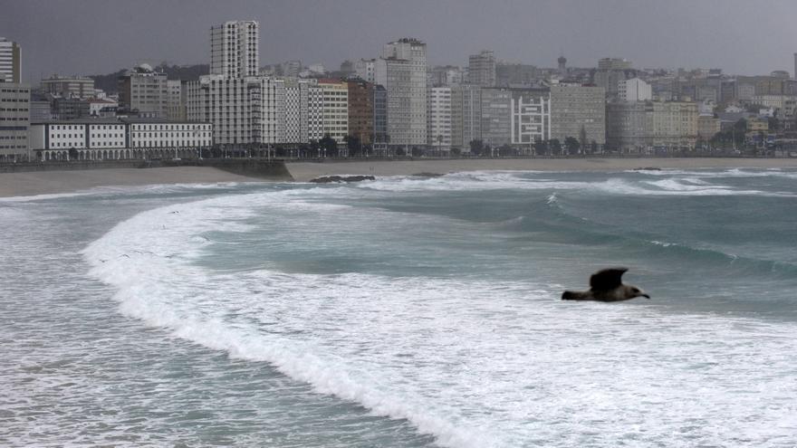 Fallece Tito El Viejo, el gran padre del surf en A Coruña