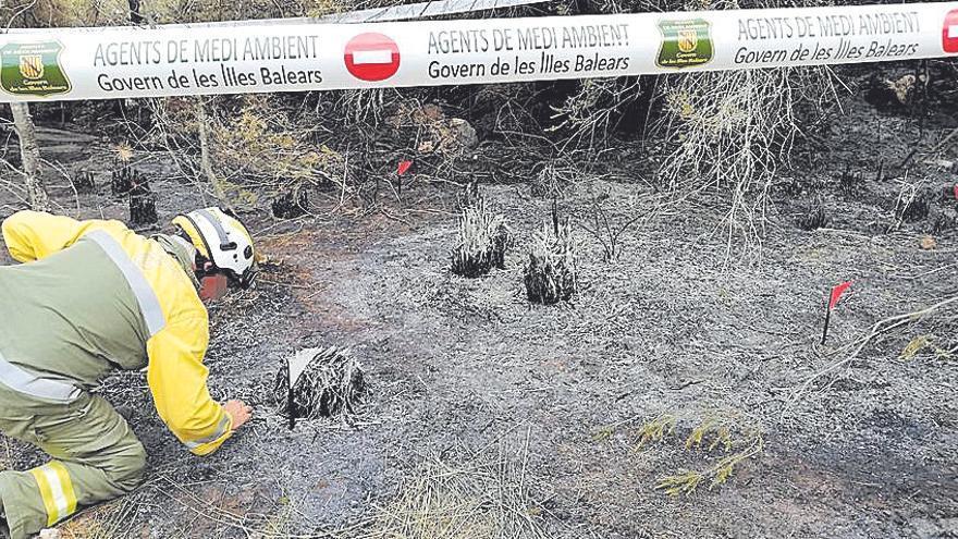 Una ola de incendios que provocó la alarma en Esporles
