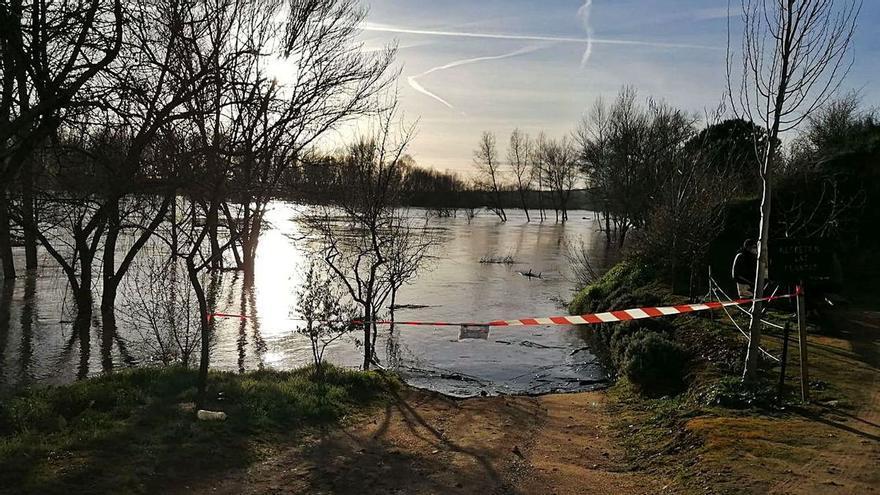 Zamora | La CHD considera concluidas las crecidas en los ríos y afluentes de la cuenca del Duero