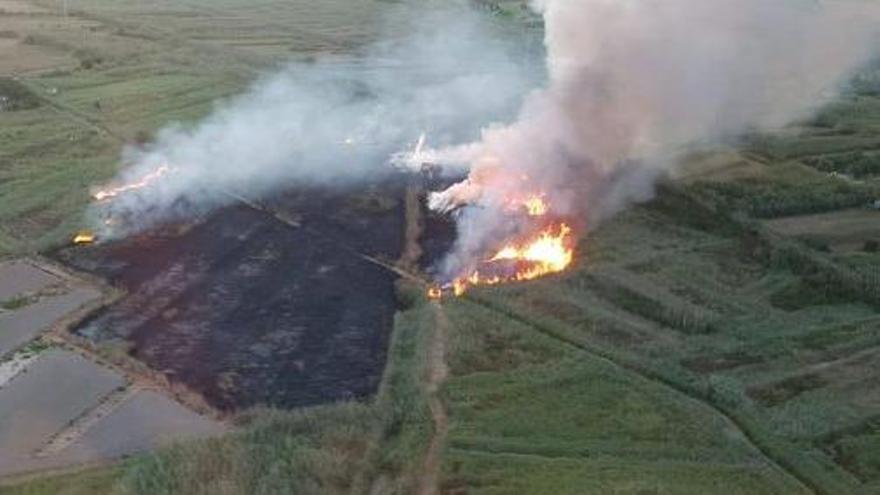 Un incendio arrasa dos hectáreas de cañizo en s'Albufera