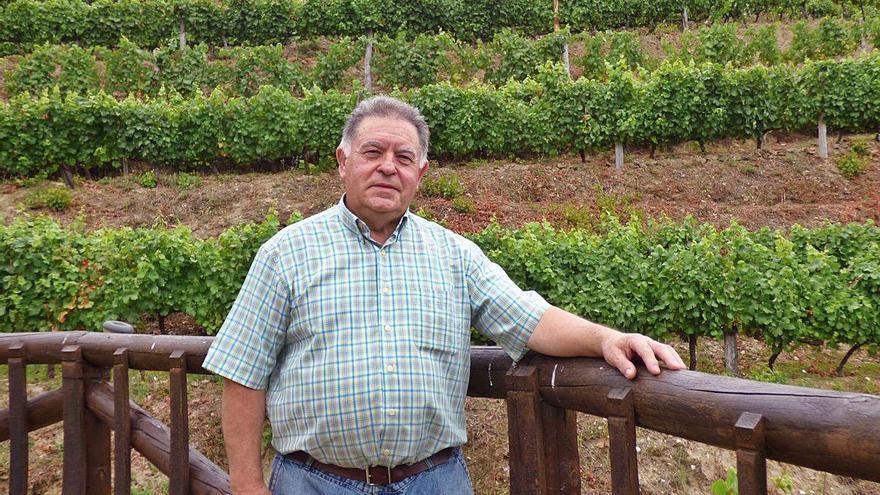 Chicote abre sus viñas