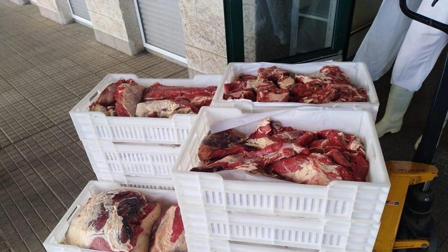 El Hospital de La Palma recibe una vaca como donación