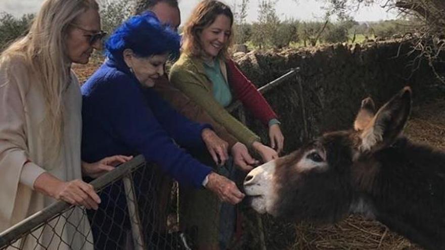 Lucía Bosé, un fin de semana entre amigos en Mallorca