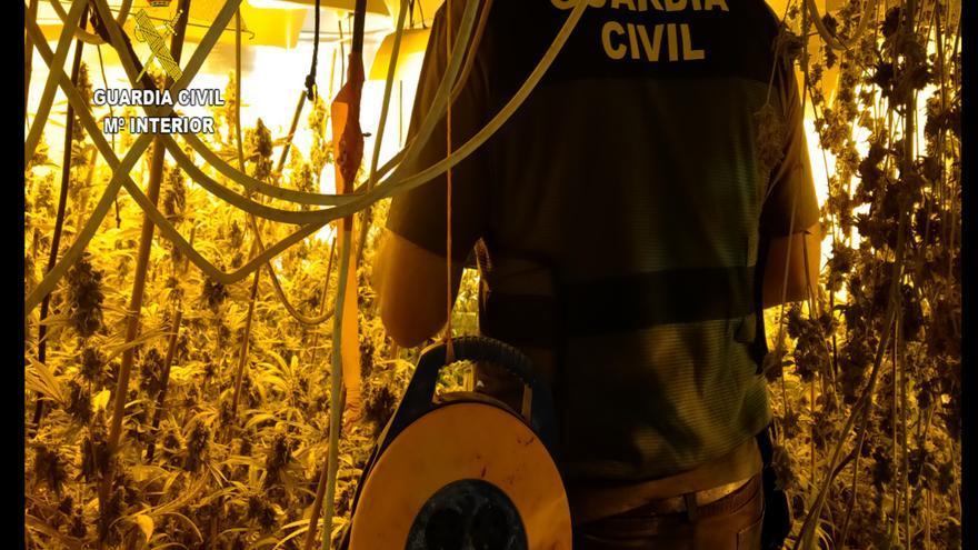 Desmantelada una plantación 'indoor' de marihuana con un detenido en Villa del Río