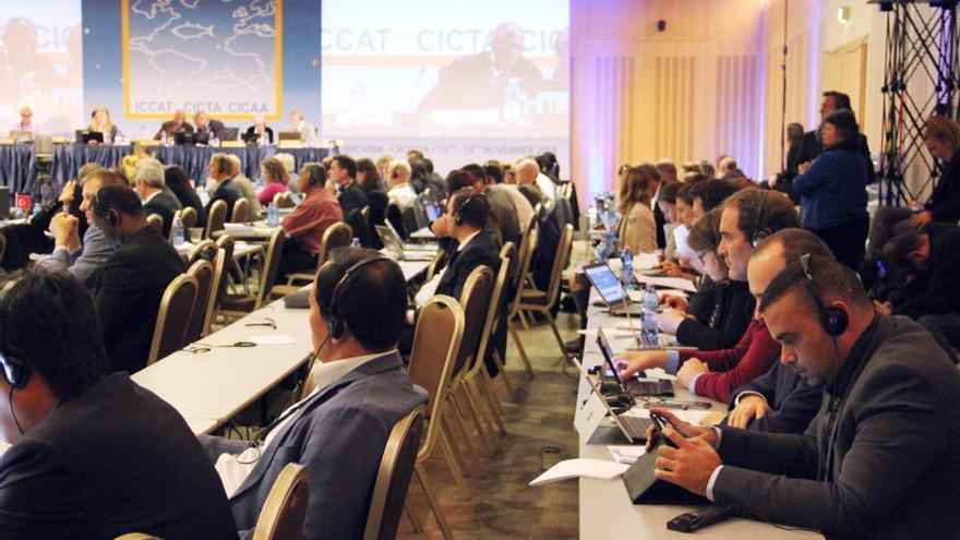 Canarias contará con una cuota específica de atún rojo asignada por la Unión Europa