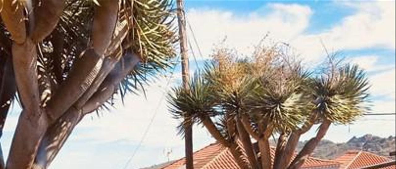 Imagen de una reunión de la Cooperativa El Ciempiés con el arquitecto que diseña su 'cohousing'