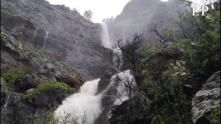 Las lluvias salvan el año agrícola con casi un millón de metros cúbicos en las presas