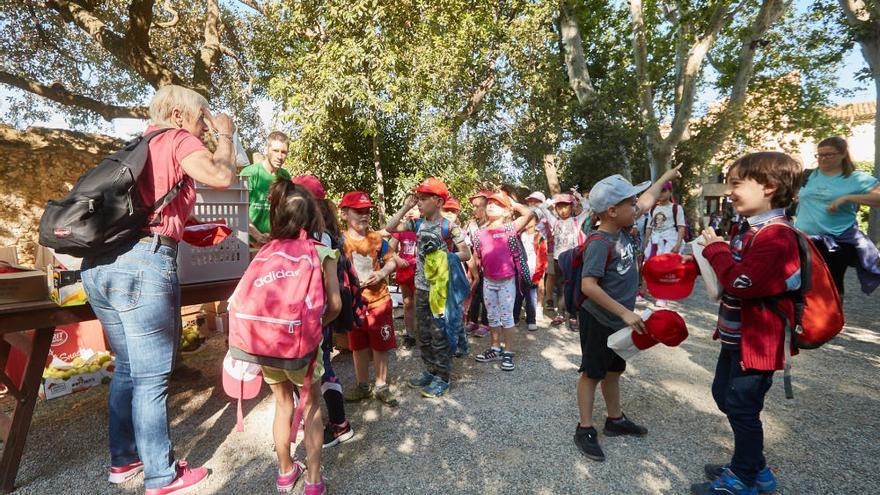 Onze escoles anellen pollets de cigonya al Castell de Peralada