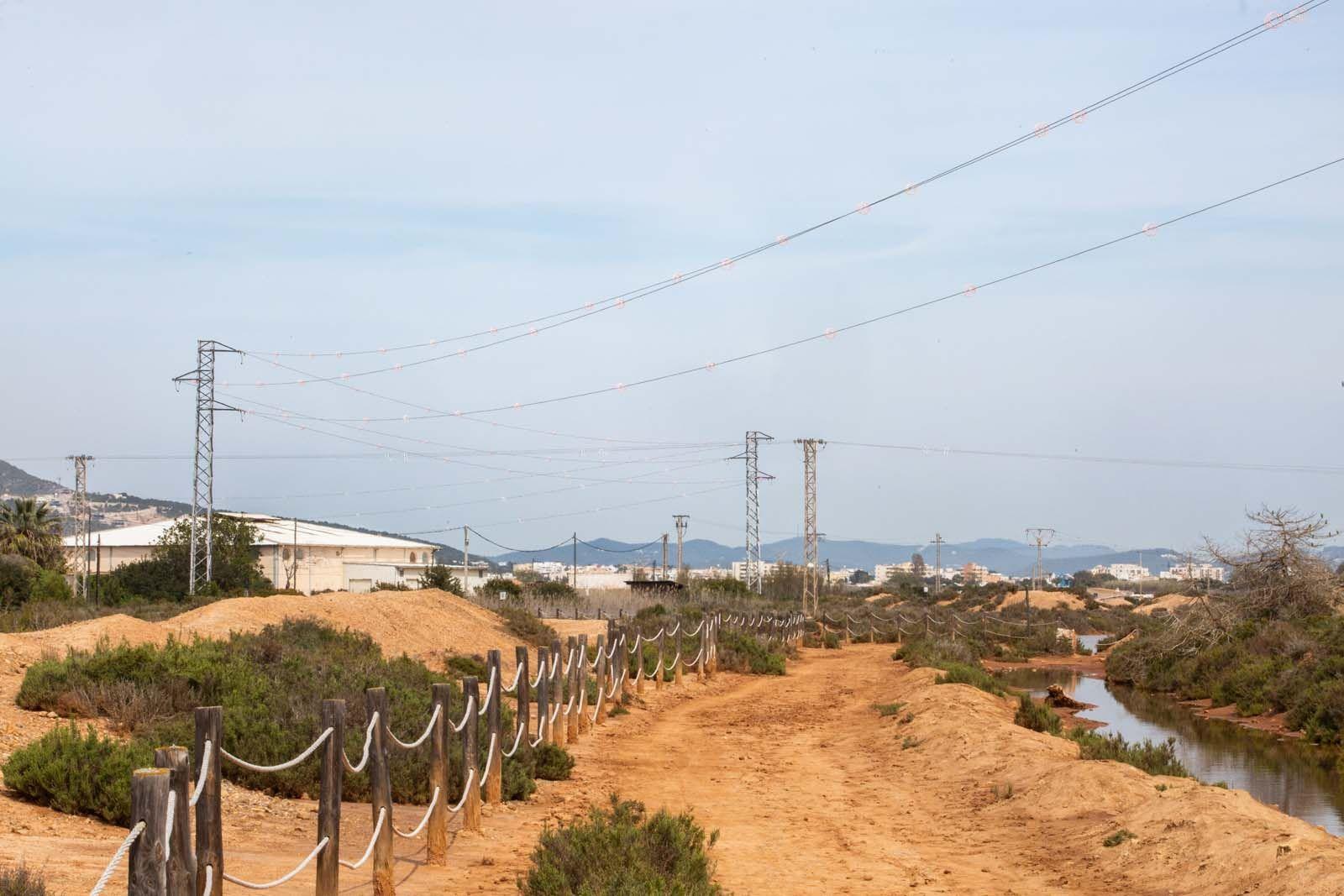 Los tendidos mortales para los flamencos en ses Salines de Ibiza tenían que estar enterrados desde 2009