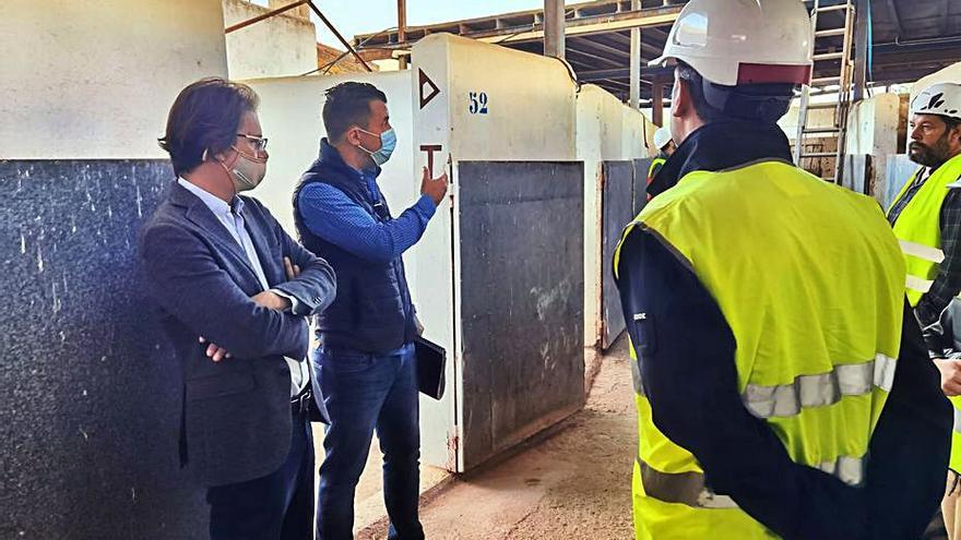 280.000 euros y dos meses para el lavado de cara al Hipódromo de Sant Rafel