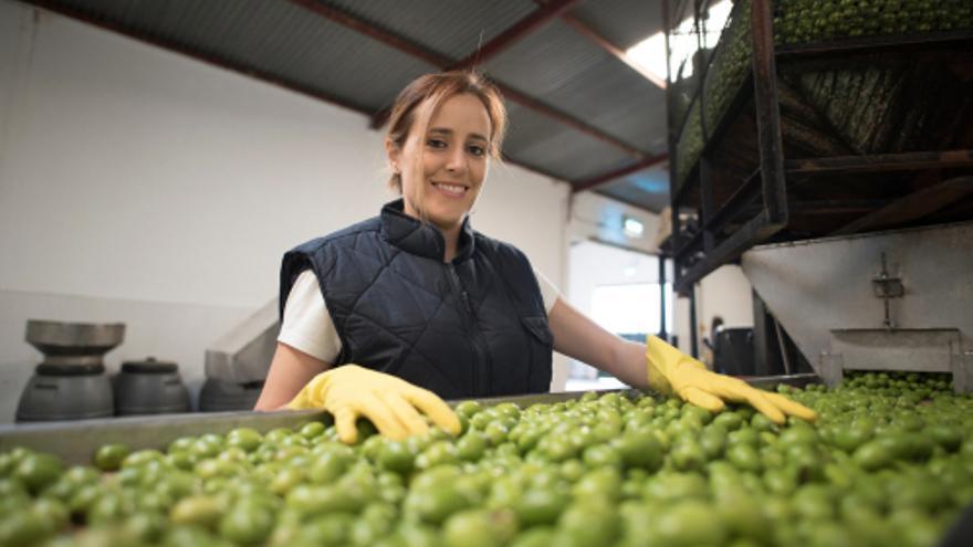 Peones para planta de aceitunas, personal para inventario, montadores de estructuras y mecánicos, los perfiles más solicitados esta semana en Extremadura
