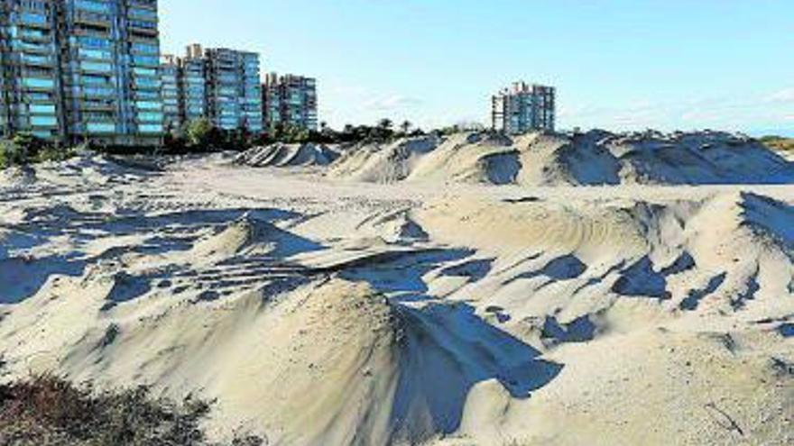 Las nuevas dunas de la Garrofera retrocederán pese a las quejas vecinales