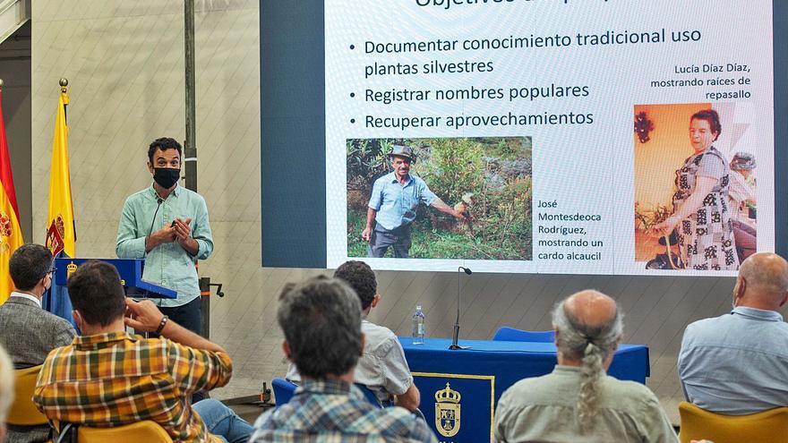 La Isla atesora 200 plantas silvestres para alimento y   usos medicinales