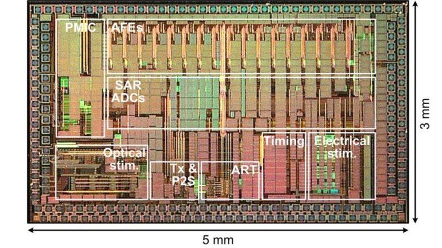 Un chip ilumina al cerebro para resolver sus enigmas