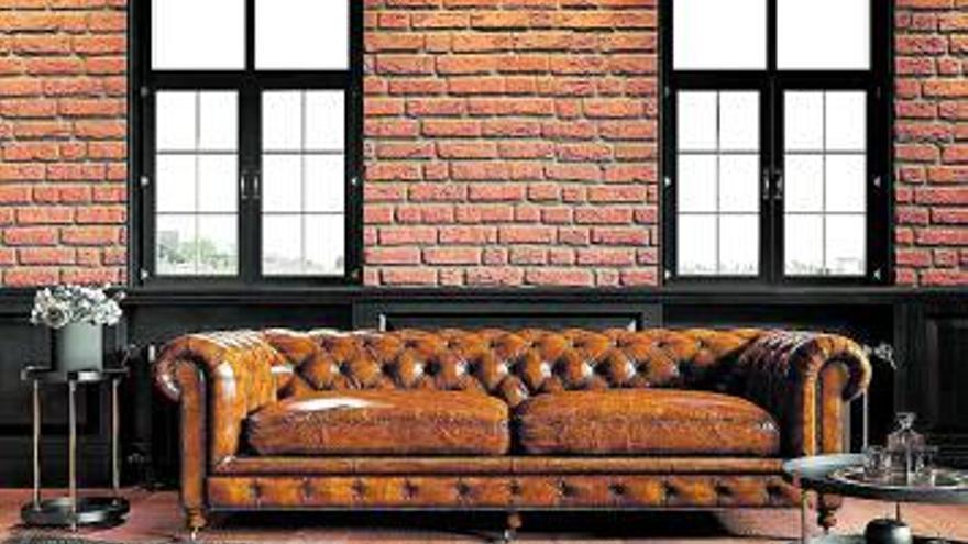El honor de sentarse en el sofá