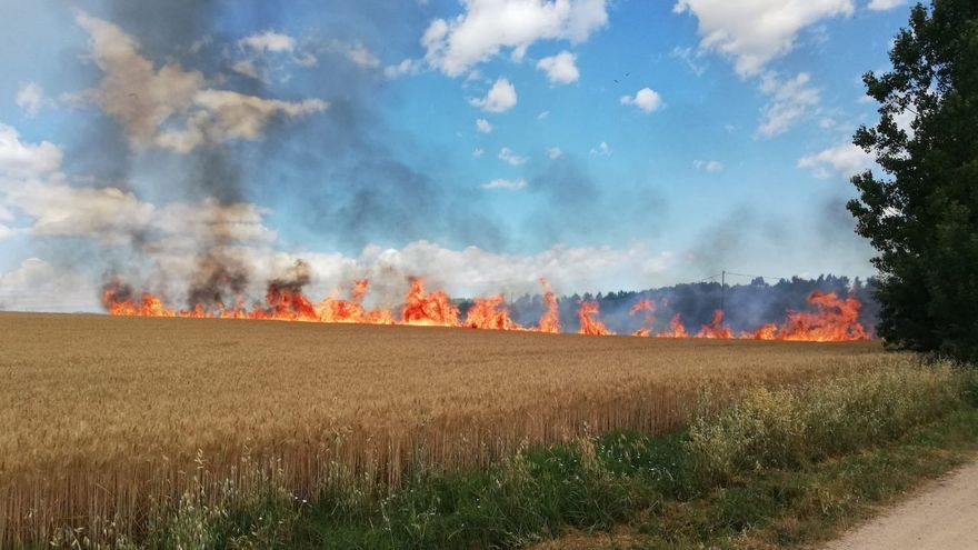 Cremen 3,7 hectàrees en un incendi agrícola a Sils