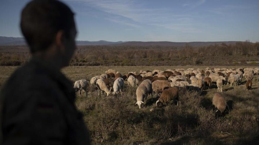 La mujer rural tiene en su mano la modernización del campo zamorano