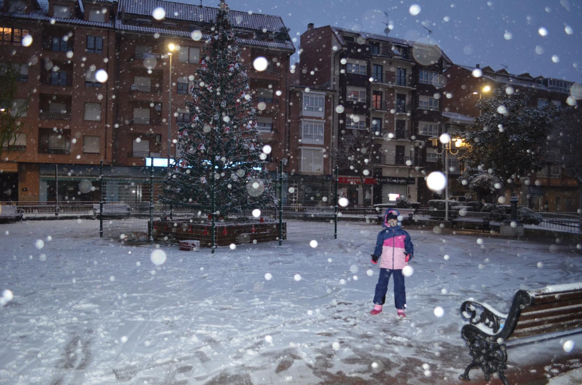 Borrasca Filomena en Benavente, las imágenes del temporal