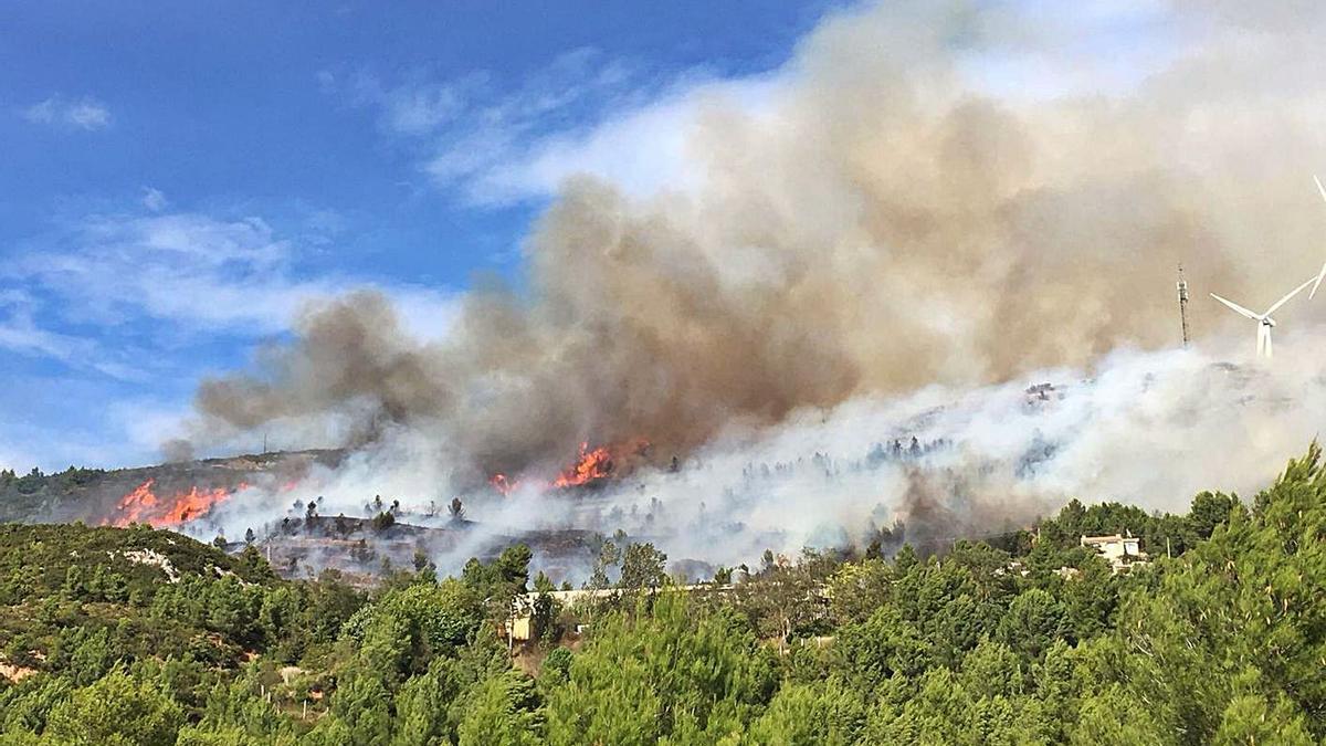 Las llamas avanzan por la zona de pinada y monte bajo cercando varias viviendas, ayer.