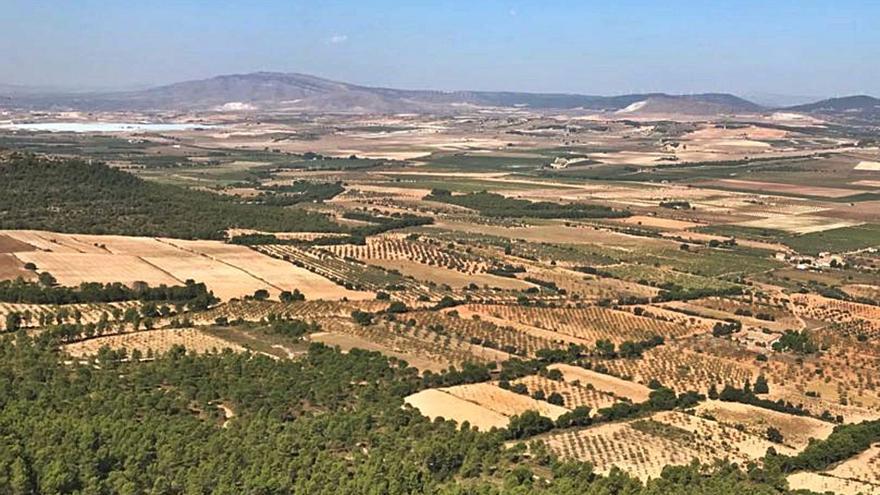 El Consell tumba la primera planta solar en Villena por su impacto ambiental