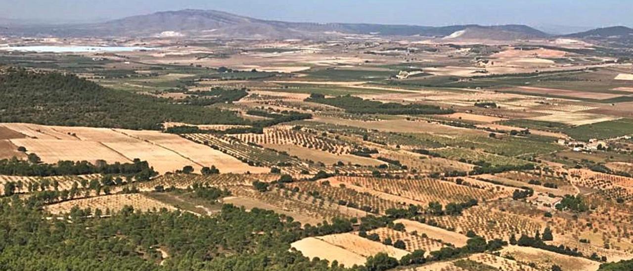 El Valle de los Alhorines donde se quería construir el huerto solar que ha sido rechazado. | J.C.P.G.