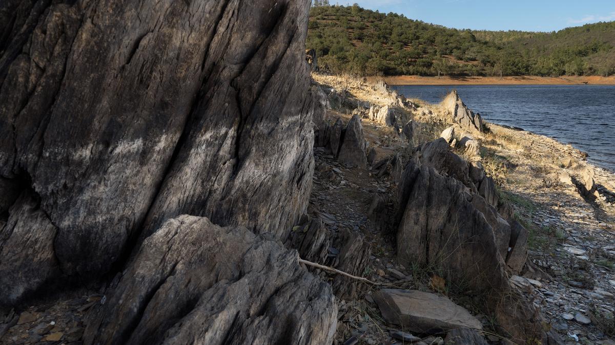Villar del Rey, efectos de la sequía.