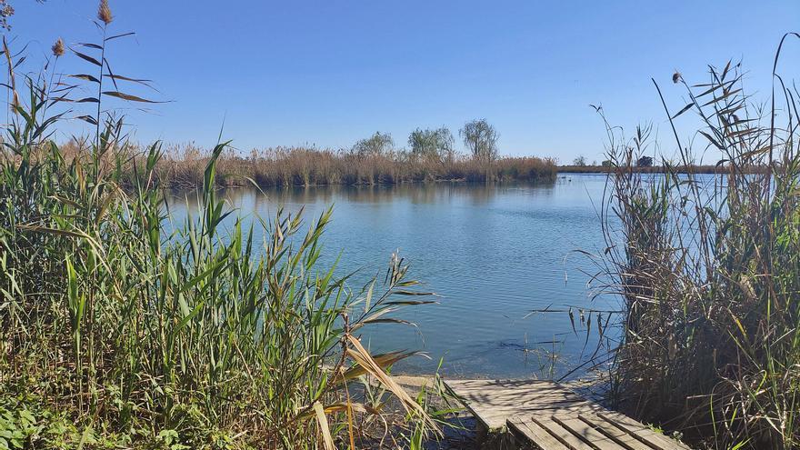 Els Estanys de Almenara: las semillas de agua