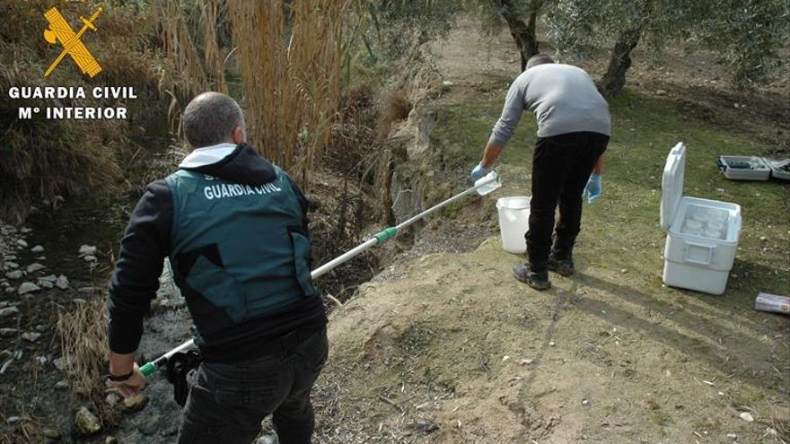 La Guardia Civil imputa a 3 responsables de El Tejar por el vertido al Guadalquivir