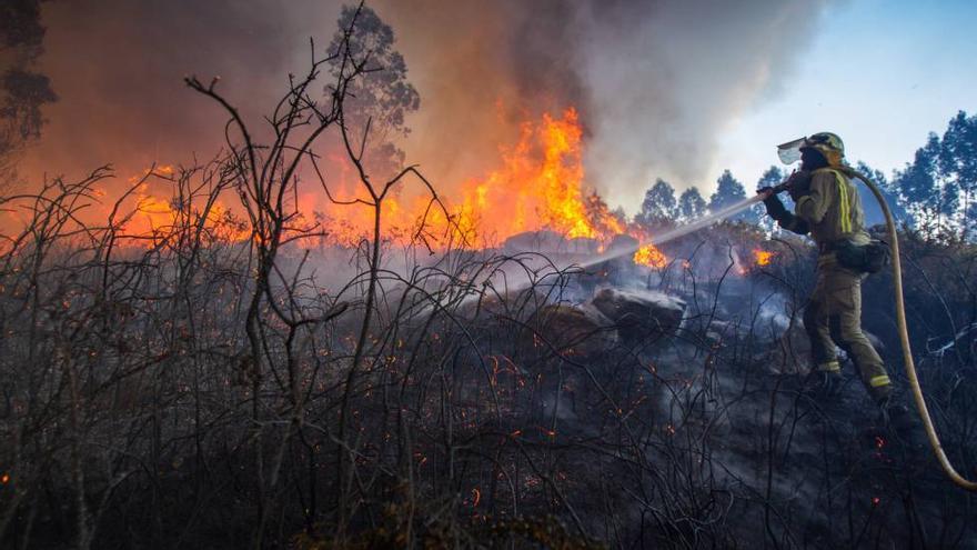 El Campello ultima su Plan de Prevención de Incendios Forestales