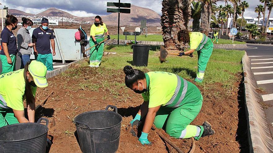 'Tegoyo en verde' sostiene los jardines