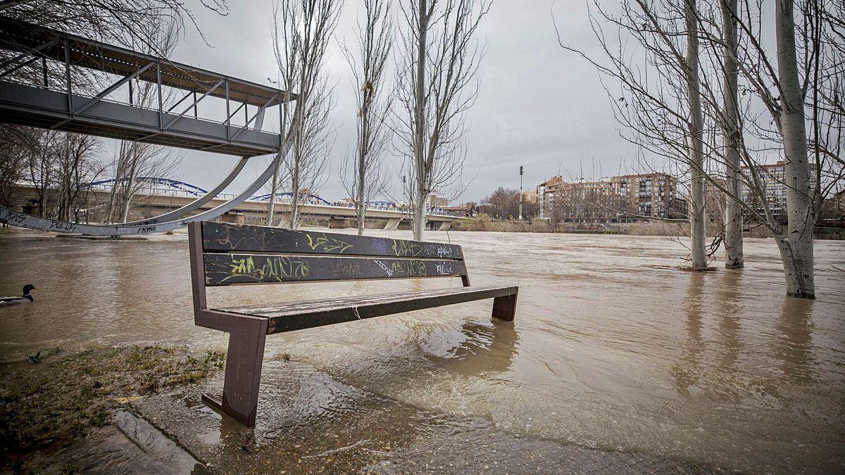 Imagen de la ribera del Ebro a su paso por Zaragoza durante la última riada