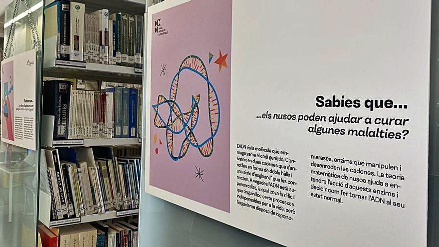 Mostra de curiositats matemàtiques a la biblioteca del Campus