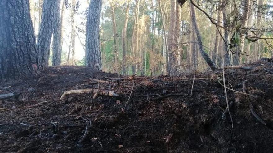 Un incendio arrasa 1.500 m2 de monte privado en Tui