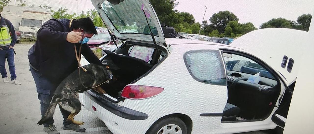 Inspección del vehículo en Elche