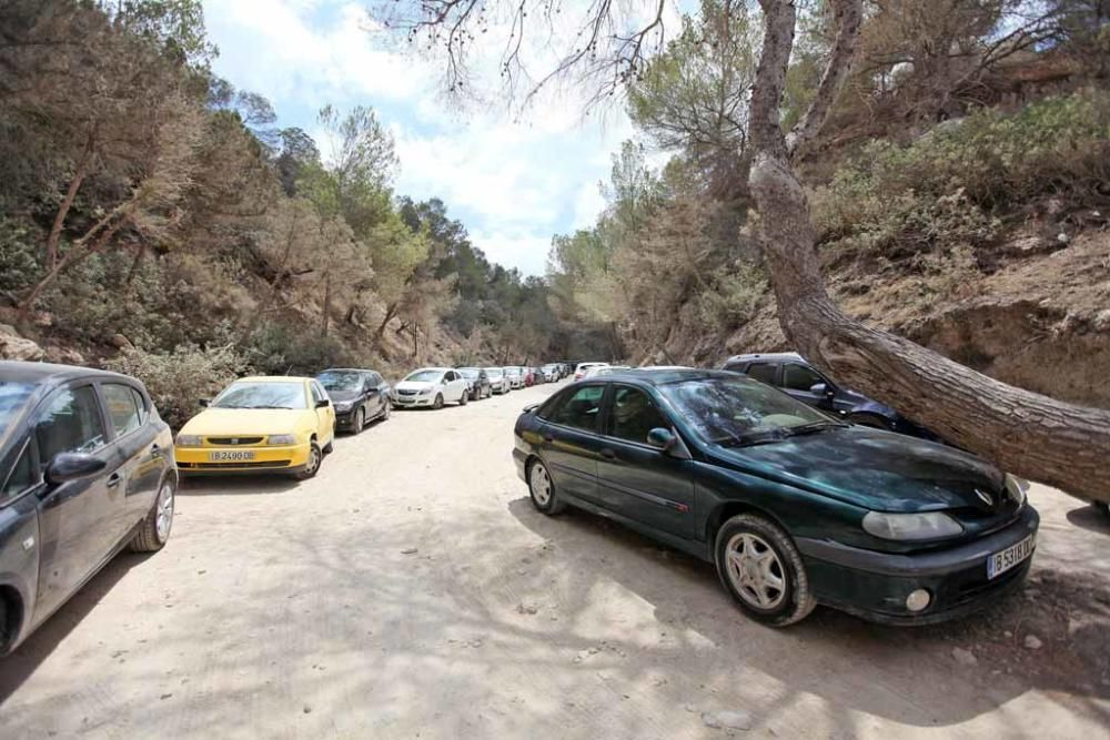 Saturación en Cala d''Hort