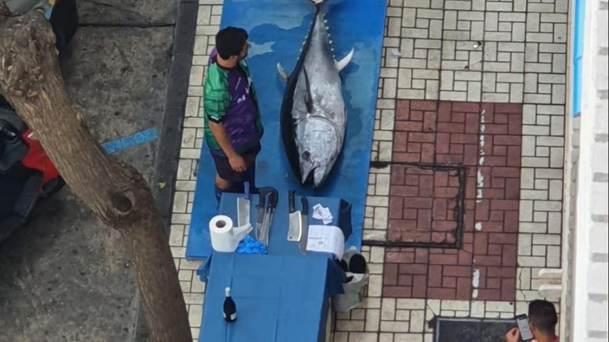 El Ayuntamiento de Málaga estudia expedientar a un bar por realizar el ronqueo de un atún en plena calle