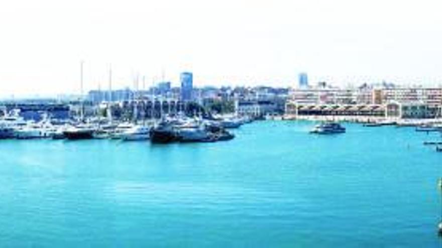 Arcadi España asume la vicepresidencia del consejo de la Marina de València