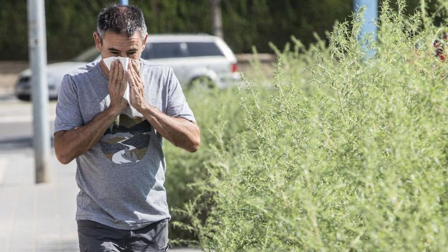 Una primavera más leve para los alérgicos gracias la mascarilla