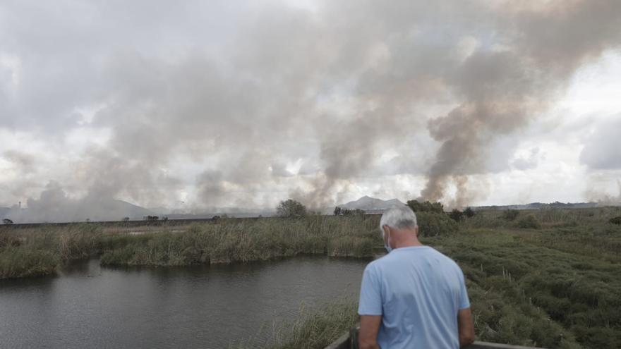 Los 63 incendios ocurridos Baleares han quemado este año 469 hectáreas